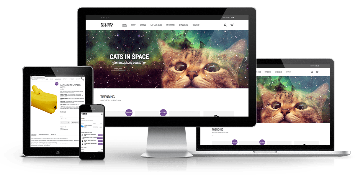 Gizmo Website Design